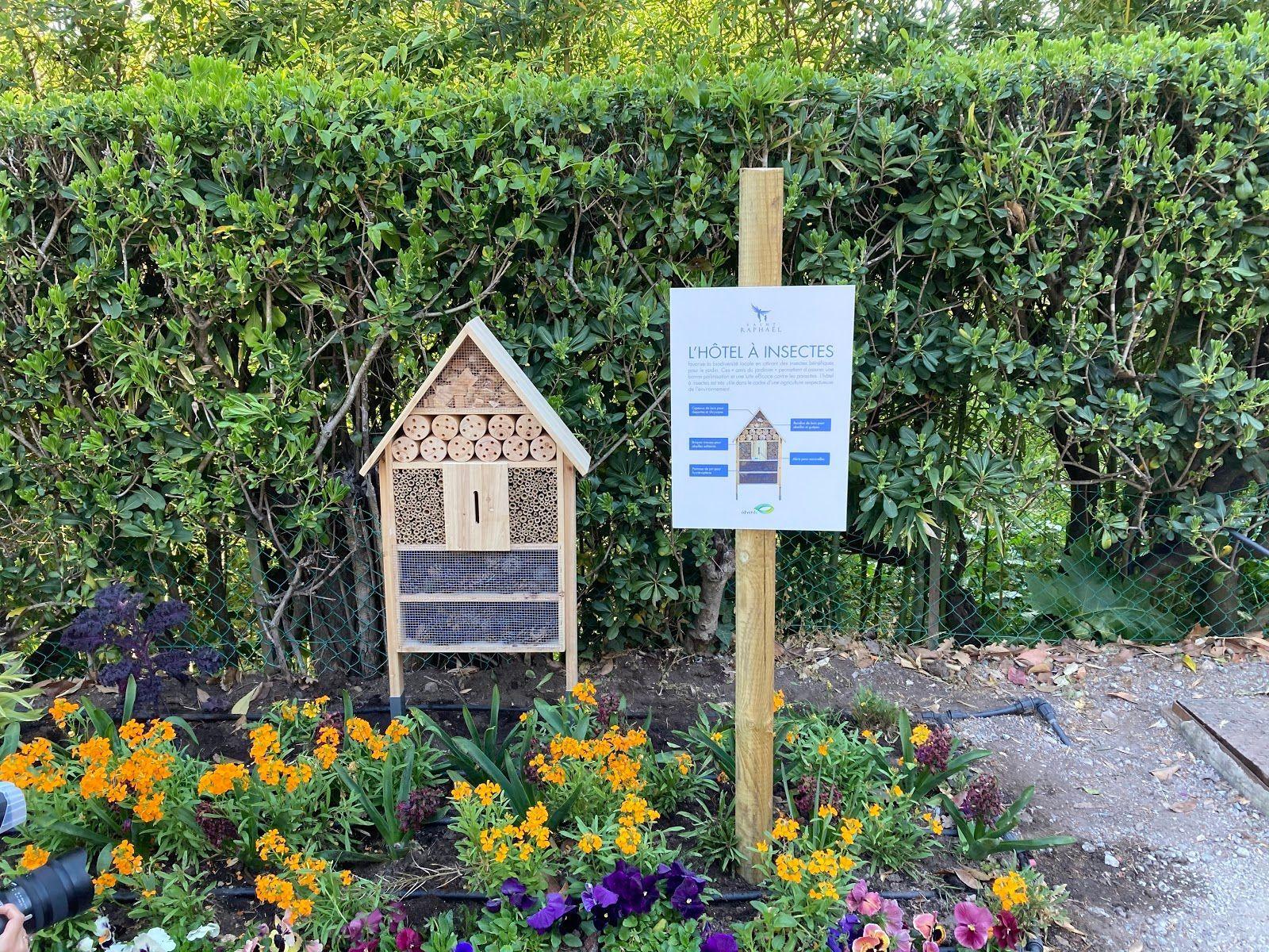 hotel à insecte journée mondiale des abeilles