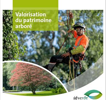 brochure-valorisation-patrimoine-arbore-idverde