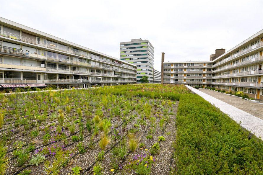 espace_vert-residentiel