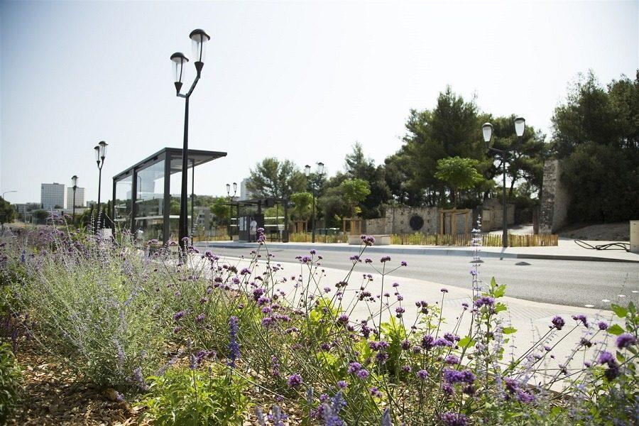 centre ville-transport en commun